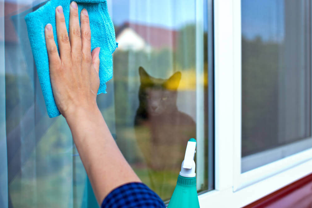 Tips to Keep your Home from Smelling with Pets
