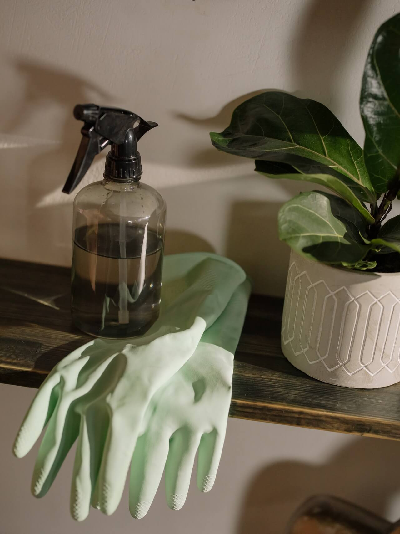 Preparing your Home for a Professional Cleaner